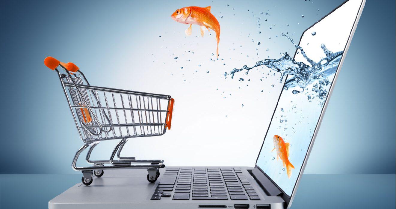 Monter sa propre boite de vente en ligne